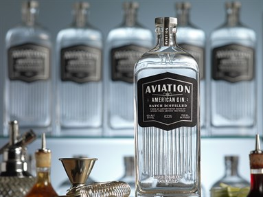 Aviation Gins Blog Brian Maule