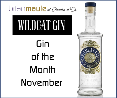 November Gin Of The Month FB